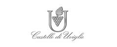 castellodiuviglie