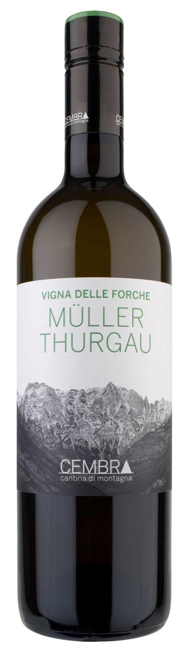 Muller Thurgau Vigna delle Forche (2013) Cembra Cantina di Montagna